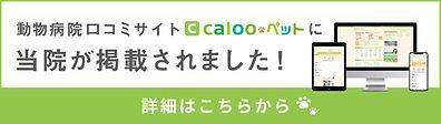 bn_01-rec.jpg