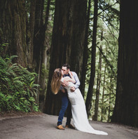Redwood forest photoshoot