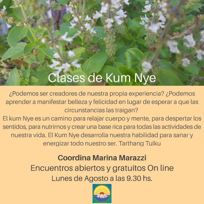 Clases de Kum Nye On line - Lunes 9.30 hs.