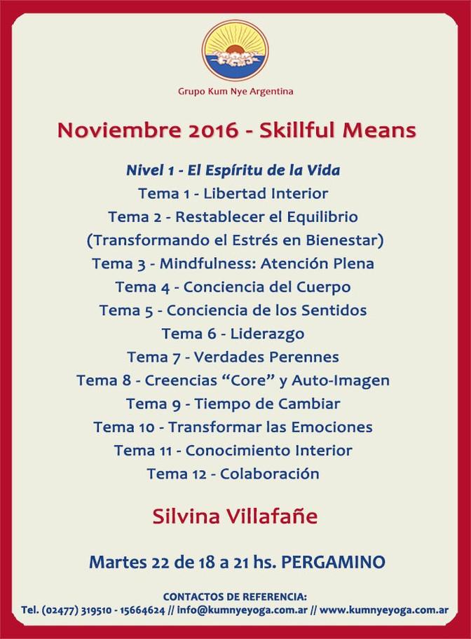 Skillful Means - Pergamino • Noviembre 2016