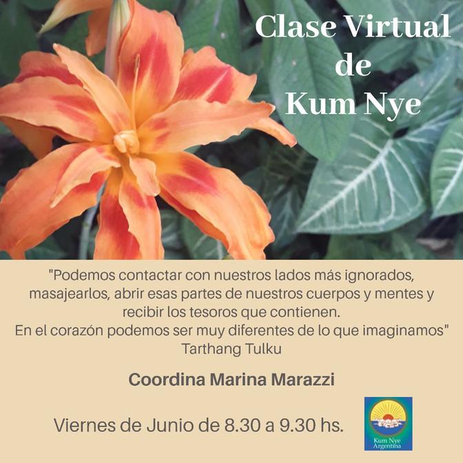 Clase Virtual de Kum Nye - Viernes de Junio a las 8.30 hs. - Gratuitas