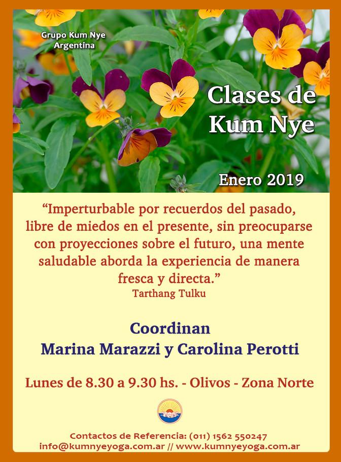 Clases de Kum Nye - Olivos - Zona Norte -  Enero de 2019