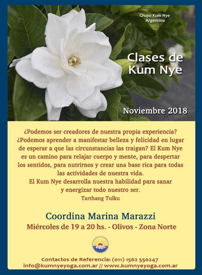 Clases de Kum Nye en Olivos - Zona Norte -Noviembre de 2018