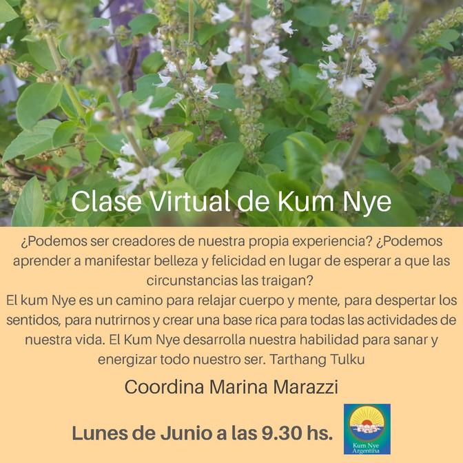 Clase Virtual de Kum Nye - Lunes de Junio a las 9.30 hs. - Gratuitas