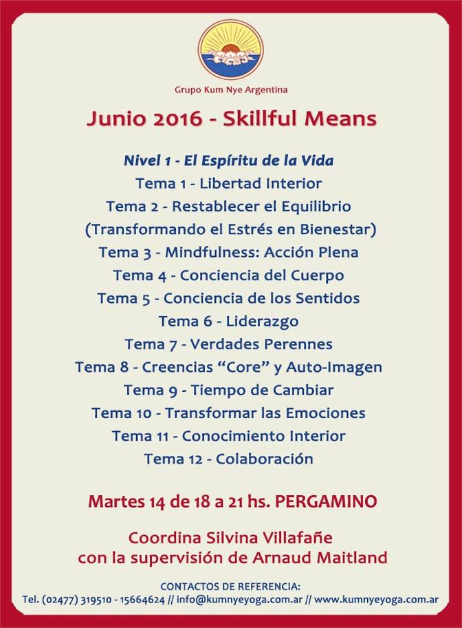 Skillful Means en Pergamino • Junio 2016