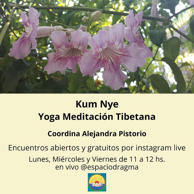 Kum Nye por Instagram Live - Lunes, Miércoles y Viernes 11 hs.