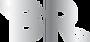 logo silver short TP.png