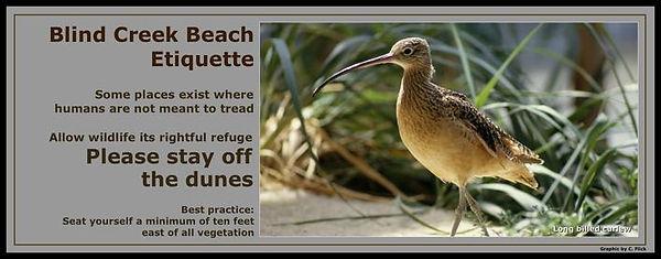 keep off dunes.jpg