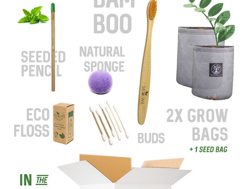 So, What is actually in the Spring Box?