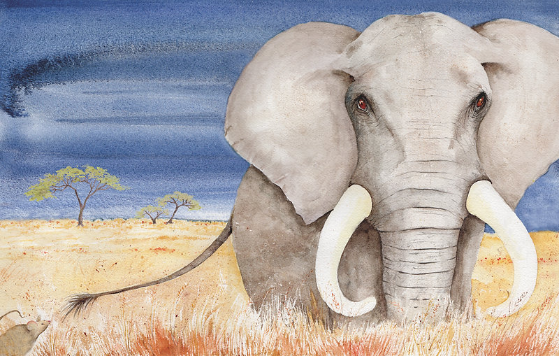 A children's picture book about endangered species