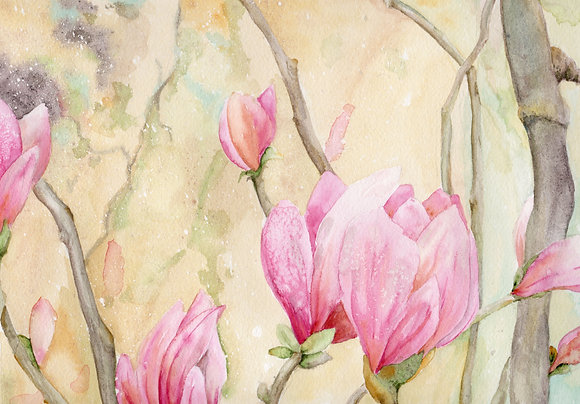 stockbridge magnolias print