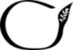 Carmen T Logo.png