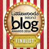Littlewoods-Blog-Awards-2016-Website-MPU