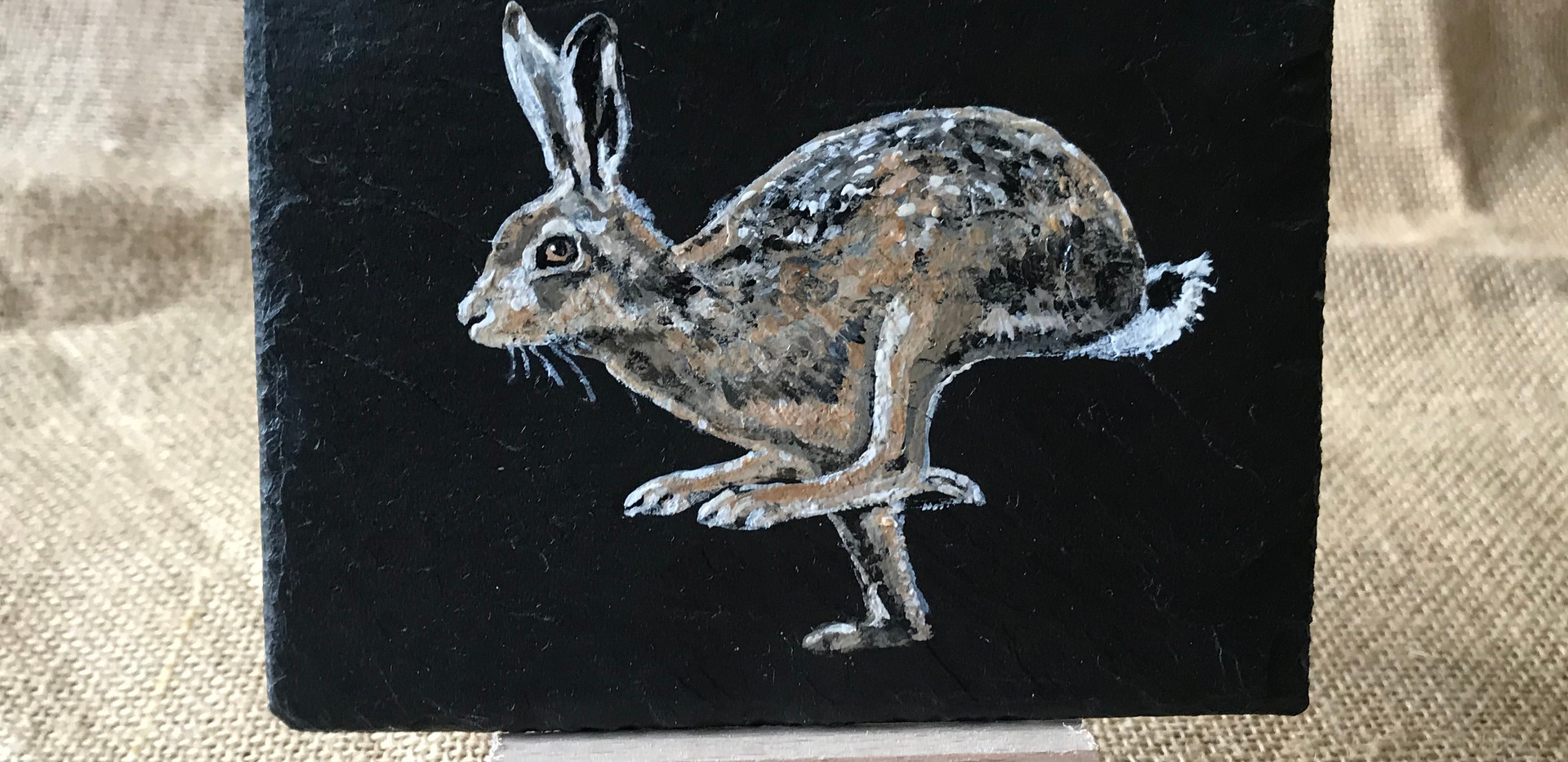 Small picture of Hare