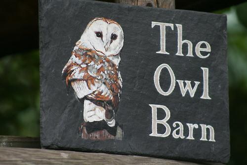 The Owl Barn