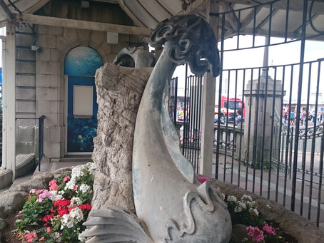 ‌I Love The Sea Life Center In Brighton‌