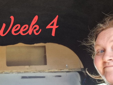 Week 4 of the campervan conversion