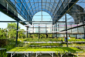 野花草毯廊與二樓景觀