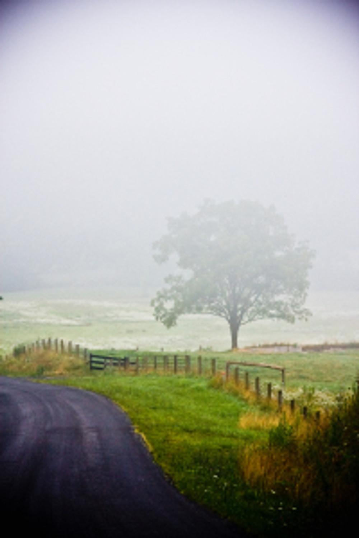 Fiery Run Fog 2