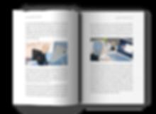 Visual Pathways open book