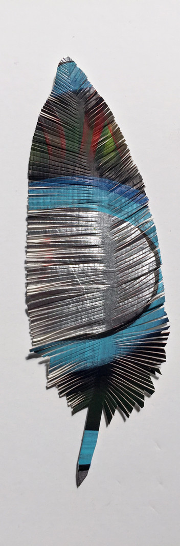 steelink_feather_IMG_6227.jpg