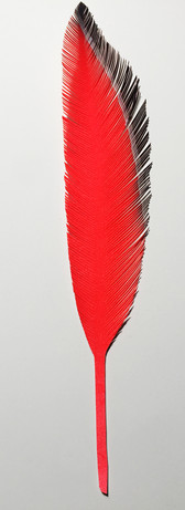 steelink_feather_IMG_5248.jpg