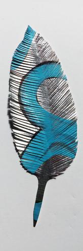 steelink_feather_IMG_6228.jpg