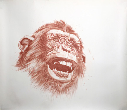 steelink_wild_kingdom_chimpanzee.jpg
