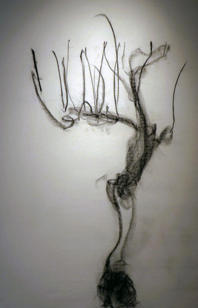 arbol_después_de_árbol_IV.jpg