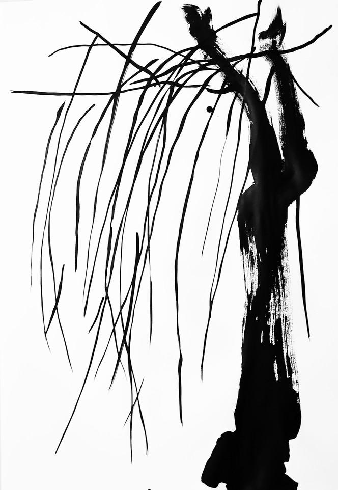 arbol japon 10.jpg
