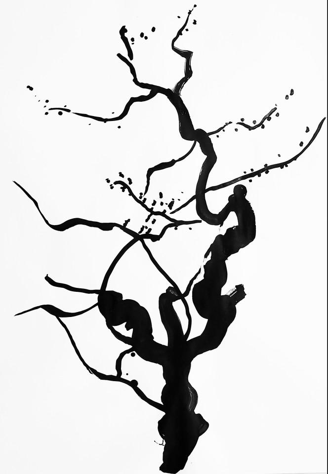 arbol japon 11.jpg