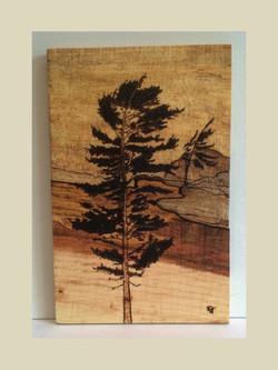 Tree - Sold