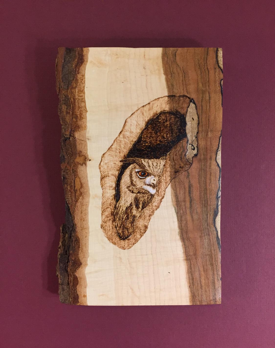 Peeking Owl in Tree Wood Burning