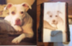Northern Embers Art Woodburning Pet portrait dog