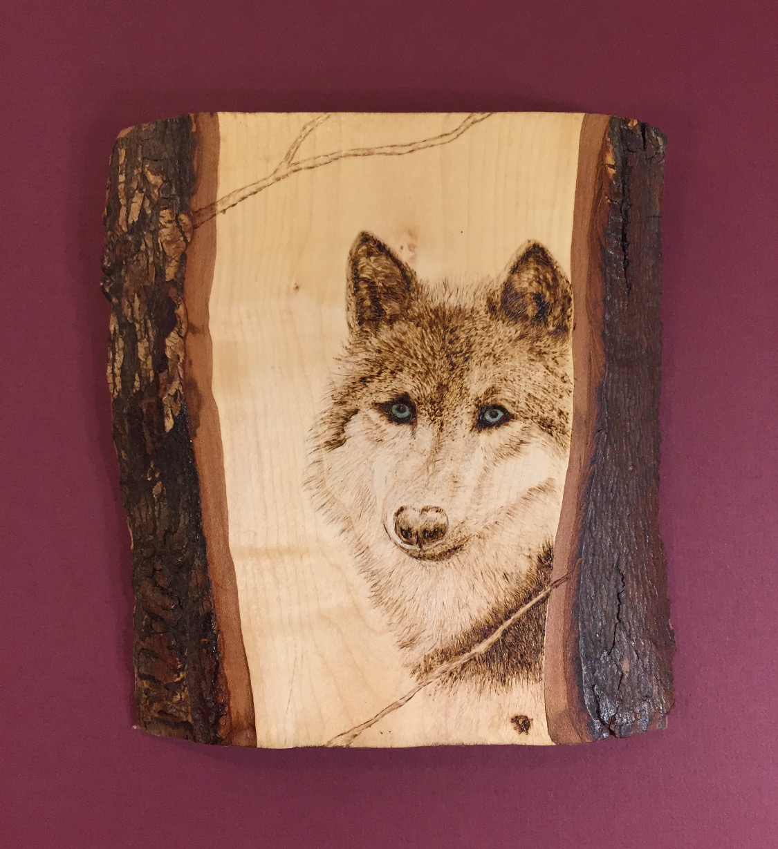 Wolf Blue Eyes - Sold