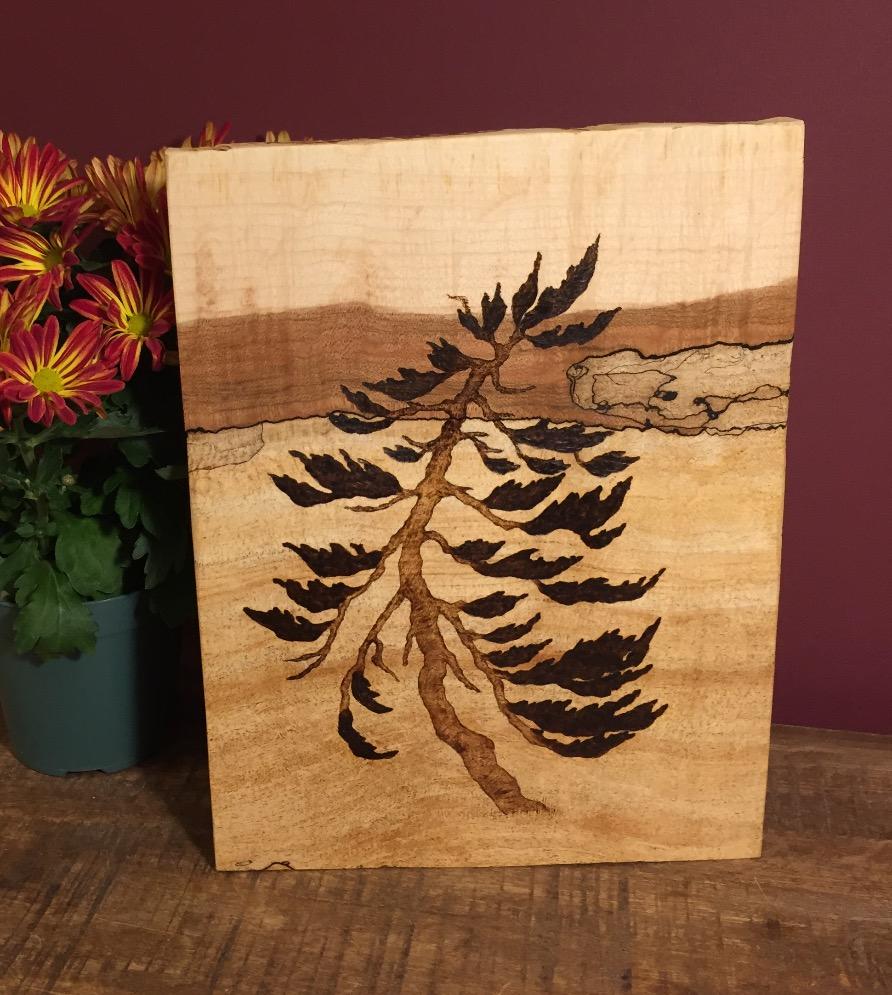 Windy Pine Tree