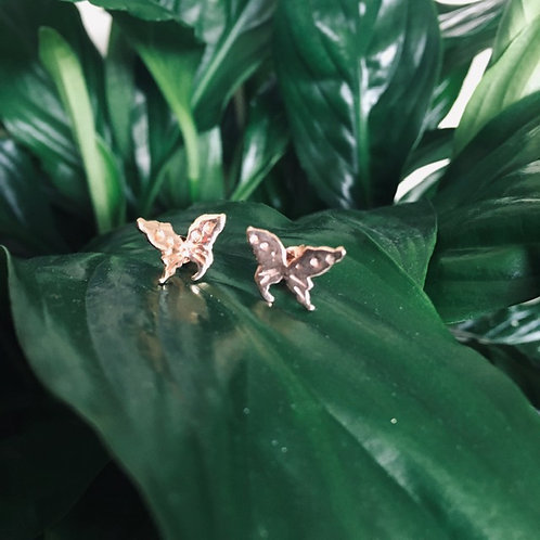 Butterfly Studs (rose gold plated)