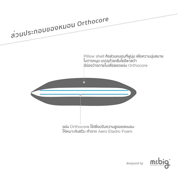 Orthocore brochure_Artboard 3.png