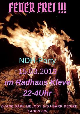 Mini Flyer NDH-Party.jpg
