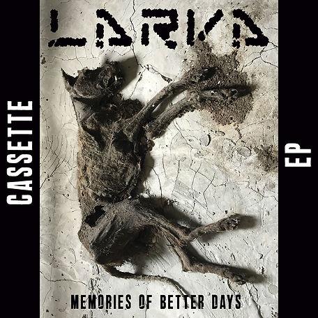 LARVA Bild Memories of better days casse
