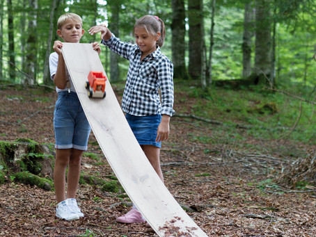 abitarE naturalE - Vivere a contatto con il legno porta benefici all'uomo e all'ambiente