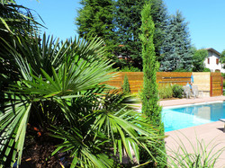 piscina pietra legno acqua