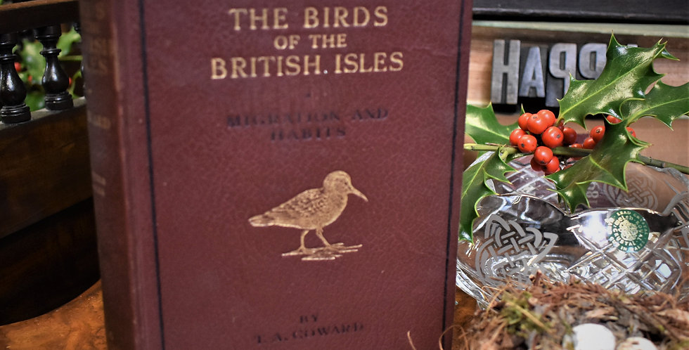 Vintage Birds of Britain Isle Book T A Coward Colour Plates Ornithologist