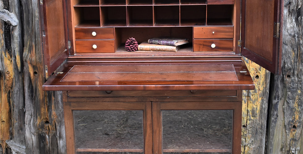 Antique Rare 19th Century Writing Desk Secretaire Home Office Storage Cabinet