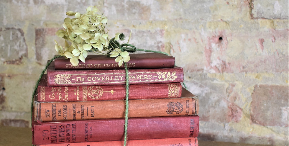 Vintage Stack Red Books Bundle for Interior Styling Book for Display