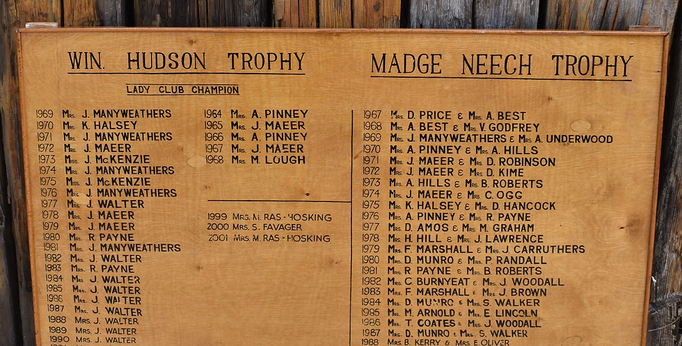 Vintage 1964 Ladies Golf Winners Sign Trophy Board Win Hudson Champion