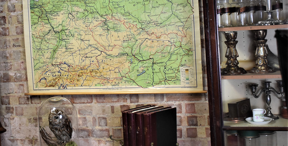 Vintage Mid Century 1956 George Philips & Sons Central Europe Wall Map Education