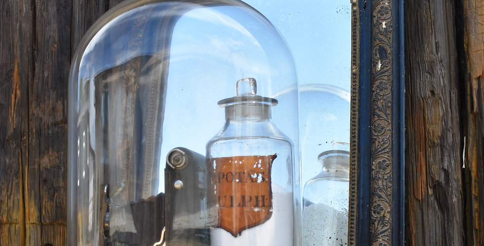 Antique Glass Dome Display Vintage Cloche Display With Base