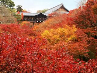 東福寺雜談