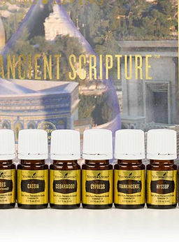 Ancient Oils of the Bible.JPG